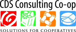 CDS-Consulting-web 95ed9